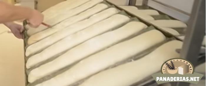 Elaboración del pan artesanal y pan industrial: proceso, máquinas...   Panaderias.net