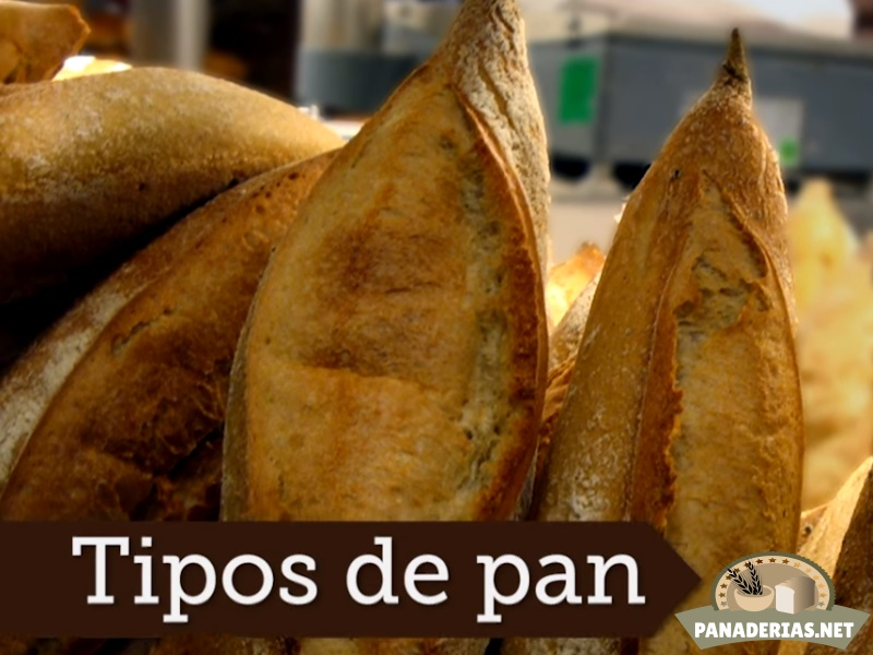 tipos de pan