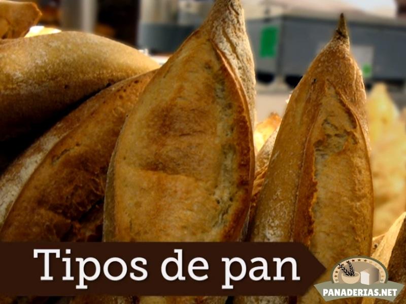 Portada artículo sobre más tipos de pan: Pan de maíz, pan de espelta, pan de molde, rosca, trenza, candeal...